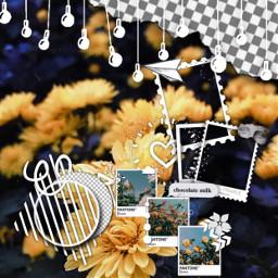 yellow flowers edit editbackground background freetoedit