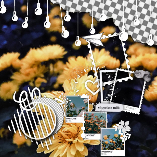 Free to use! ✨🌻✨ ——— #yellow #flowers #edit #editbackground #background #cute  #freetoedit