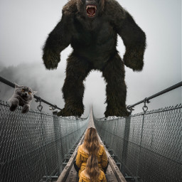 freetoedit fog bridge wirefence cat scarey ircfoggybridge foggybridge