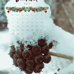 freetoedit remixedwithpicsart december2019 calendar srcdecembercalendar