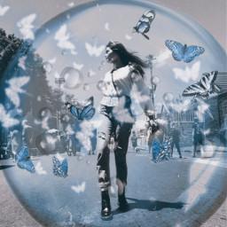 freetoedit bubbles butterflies