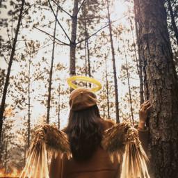 freetoedit wings angel angelcrown burn