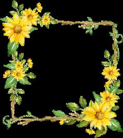 freetoedit flower square floral frame