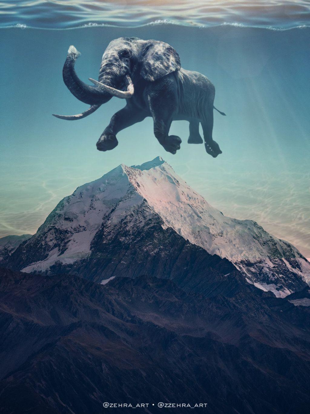 #elephant #mountain  #surreal #nature #art #freetoedit
