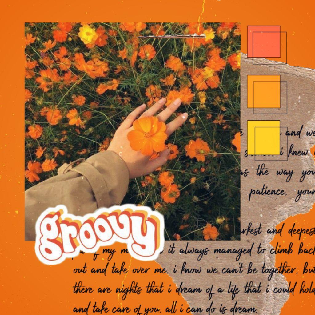 🌼🧡🍁🌼🧡🍁🌼🧡🍁🌼🧡🍁🌼🧡🍁🌼  #freetoedit#vintage#retro#collage#orange Gostei muito dessa edição! Principalmente da composição e cores. Ps.: Vou tentar trazer mais edições diárias para compensar a sumida!