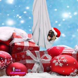 challenge happypuppy christmas december gifts irchappypuppy freetoedit