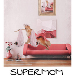 freetoedit mom puppy stickercollage photography irchappypuppy happypuppy