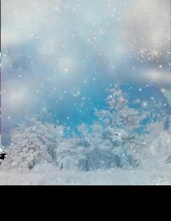 snow winter christmas letitsnow