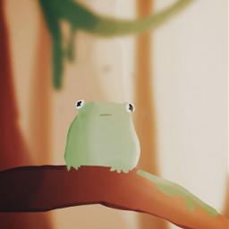 art animals frogs cute myart freetoedit