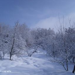 freetoedit followme snow snowflakes snowwhite