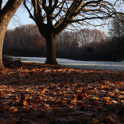 landscape trees field outandabout freetoedit