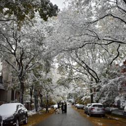 freetoedit snow pcwhite white