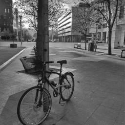 donostia street bicycle blackandwhite