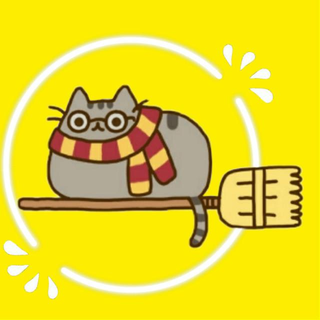 Is Harry Kitty ♥