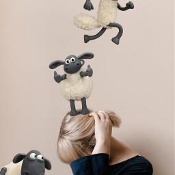 freetoedit fun sheep girl question