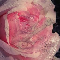 photography paintart pencilart drawing notes