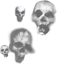 stickers skull halloween creepy scary freetoedit