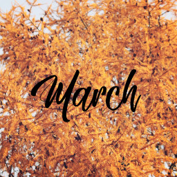 freetoedit march month