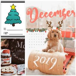 freetoedit christmascard christmas puppy nutella ccwintermoodboard wintermoodboard
