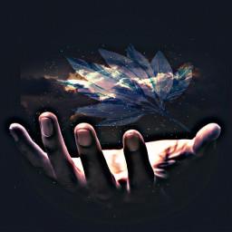 freetoedit remixed hand clouds leaf