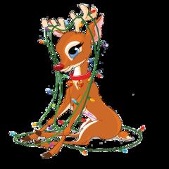 christmaslights challenge christmas december deer scchristmaslights freetoedit