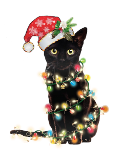 christmaslights cat freetoedit