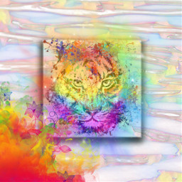colourful freetoedit