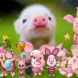 freetoedit piglet pig disney winniethepooh