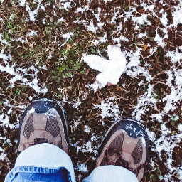 firstsnow boots feet leaf snow freetoedit