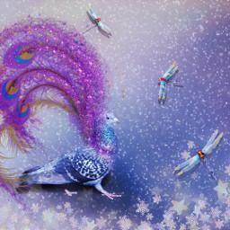 fantasy peacock blue winter sparkles freetoedit srcpurplesparkles purplesparkles