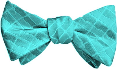 teal bow tie bowtie remixit freetoedit