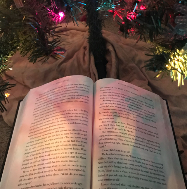 #read #tistheseason #underthetree #lights