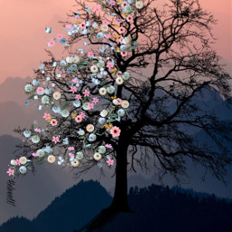 tree fantasyart surrealism madewithpicsart picsarteffects freetoedit
