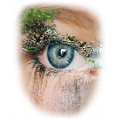 freetoedit magiceye ccc picsart magiceyes