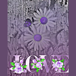 freetoedit remixed flowers love text