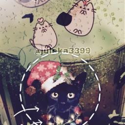 cat blackcat wallpaper green background
