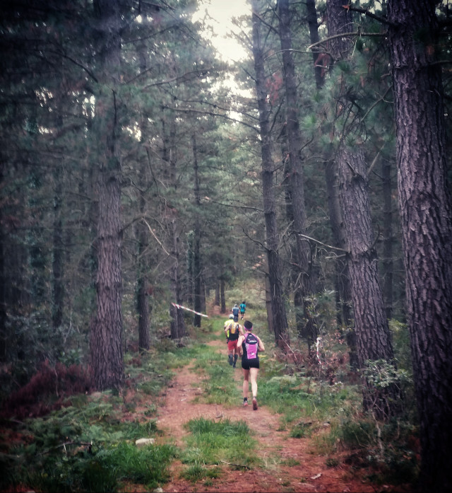#trailrunning #run #running  #mountain