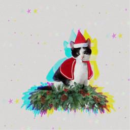freetoedit background glitcheffect cat santaclaus
