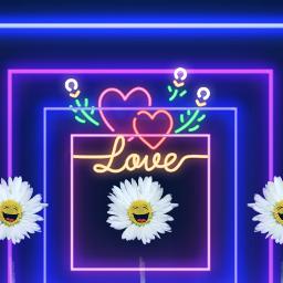daisy flower mirroreffect stickers happiness freetoedit