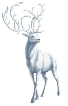 ftestickers stickers whitedeer deer winter freetoedit