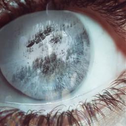 freememe eye winterforest snow winter freetoedit ircwinterview winterview