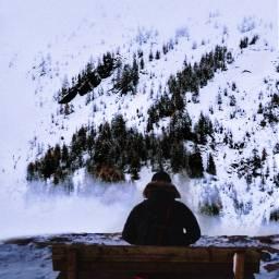 freetoedit winterview winter winterforest picsartchallenge ircwinterview