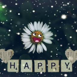 daisy flower stickers happiness friday freetoedit