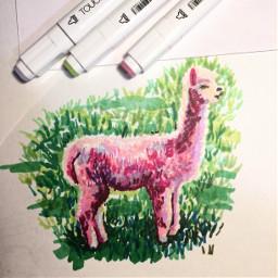 alpaca artdraw artmarkers freetoedit