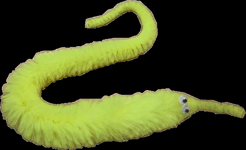 #wormonastring #worm  #freetoedit