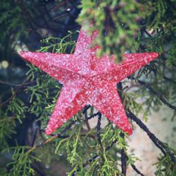 ornament christmasornaments christmasspirit star christmasmood freetoedit