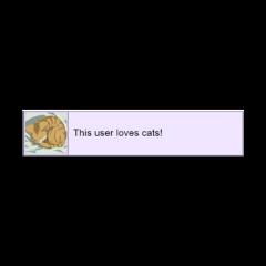 cat kitten purple user message freetoedit