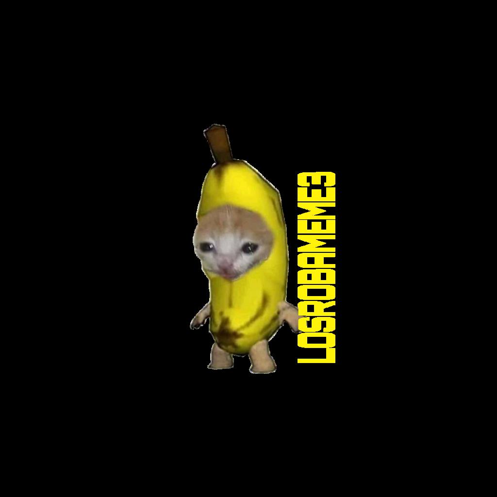 #LOSROBAMEME3