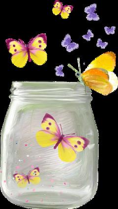 ftestickers stickers butterflies bottle jar freetoedit