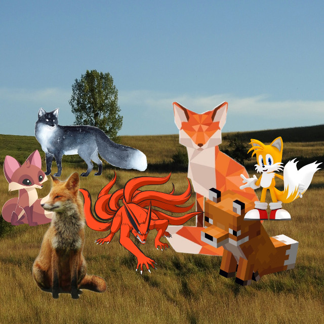 #freetoedit The art of the fox